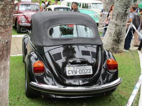 VW Fuscas (4)