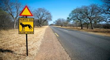 Placa de estrada no Parque Nacional de Hwange, no Zimbábue, avisa sobre o perigo de travessia de cães selvagens (MARTIN BUREAU/AFP/Getty Images)