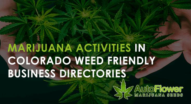 marijuana seeds for sale in colorado