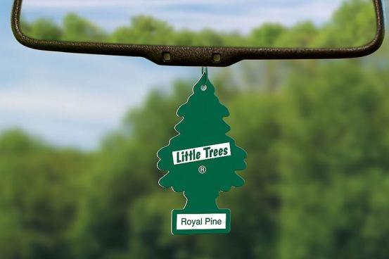 Πώς «γεννήθηκαν» τα αρωματικά δέντρα;