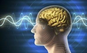 Brain-waves-650x400
