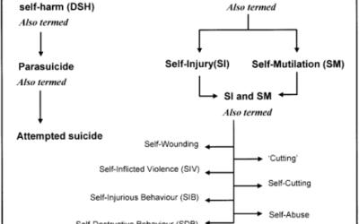 La informacion sobre autolesiones esta disponible en internet pero rara vez es precisa – Canada
