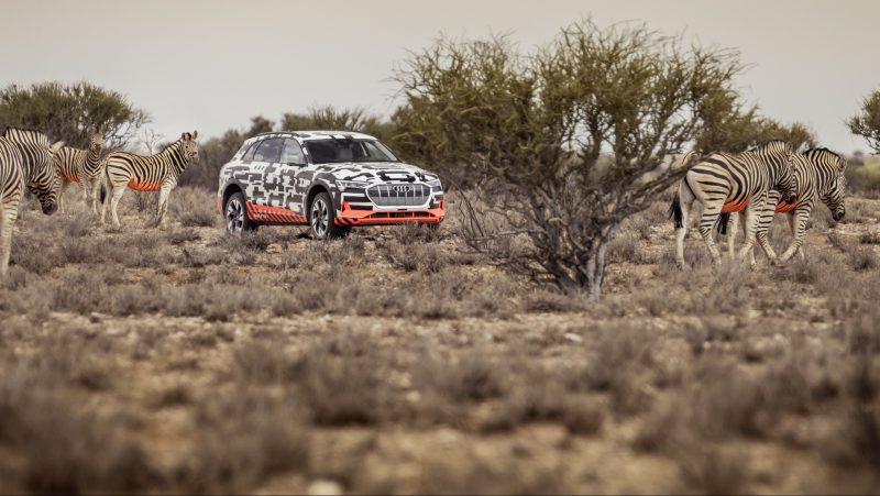 Audi e-tron Vorstellung Namibia_Safari