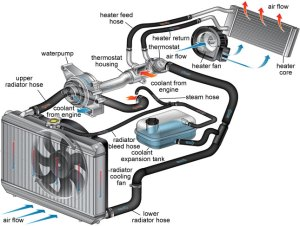 2001 Audi A6 Engine Coolant Diagram, 2001, Free Engine Image For User Manual Download