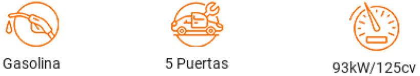 Renting ford PUMA características