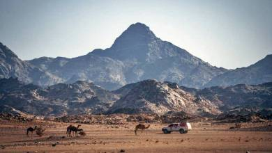 Dakar 2021 Recognition