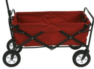 a folding wagon