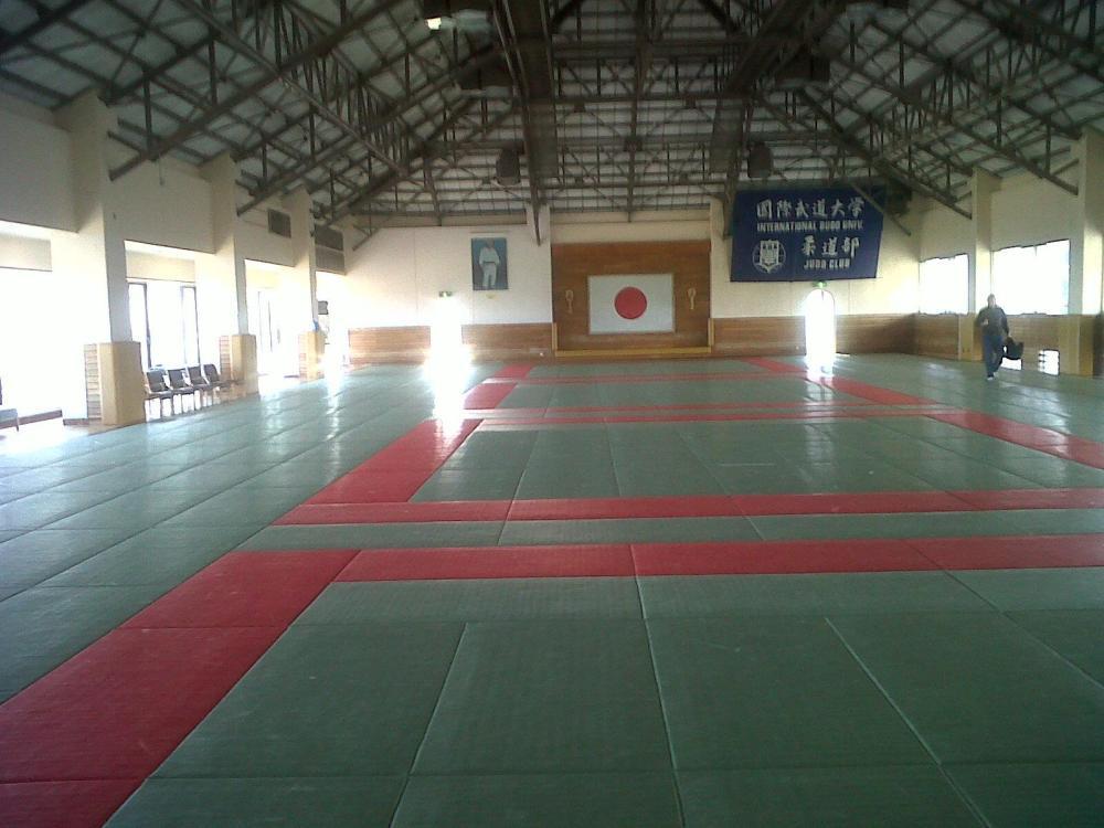Tatami club de judo budai