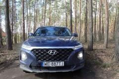 HyundaiSantaFe_testAutoRok_2019_10