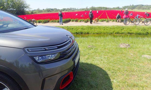 Citroen C5 Aircross –  Na każdą porę roku i na każdą drogę