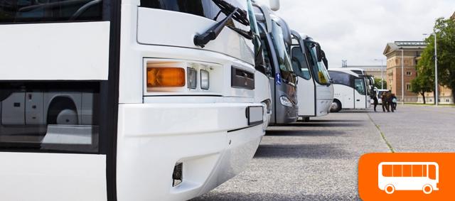 noleggio-autobus