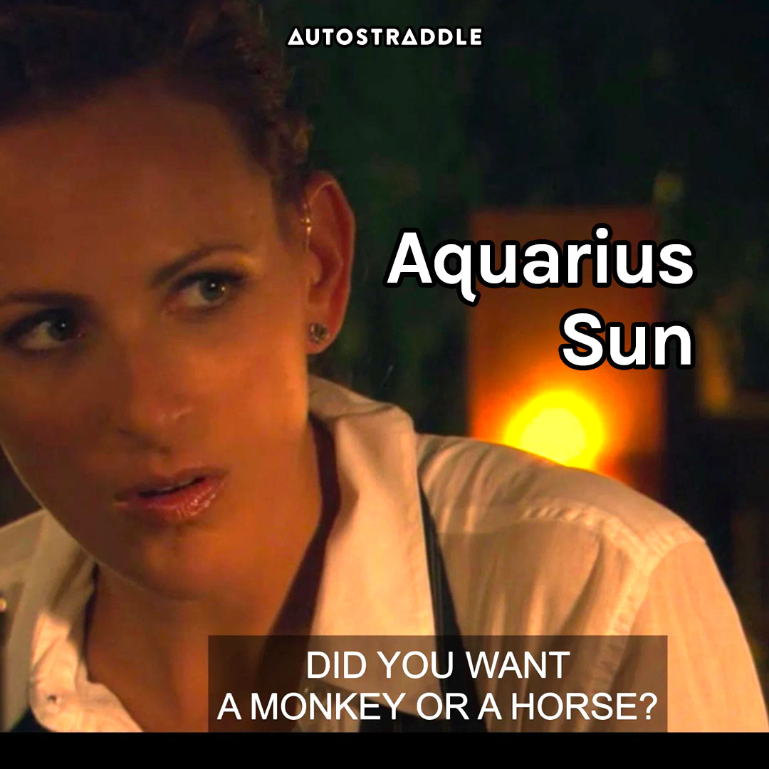 "Aquarius Sun: Jodi, seriously ""Did you want a monkey or a horse"""
