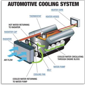 Cooling System  Understand Your Vehicle  AutoZone