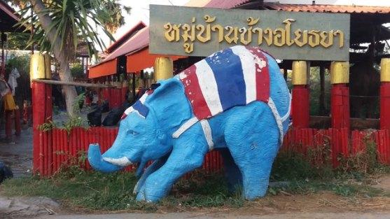 Oups je vois des éléphants bleus !