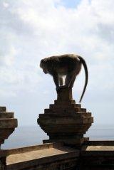 Carine F. , une habitante du temple d'Uluwatu