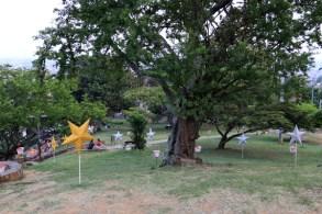 parc dans le quartier San Antonio Cali - l'autre ailleurs en Colombie, une autre idée du voyage