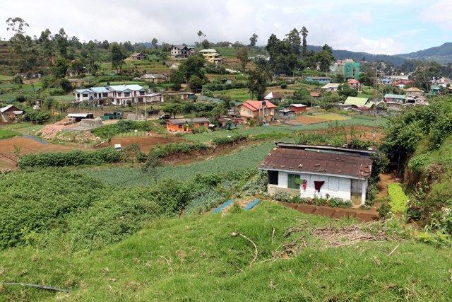 sur la route vers l'usine de thé Pedro Estate, près de Nuwara Elyia - l'autre ailleurs au Sri-Lanka, une autre idée du voyage