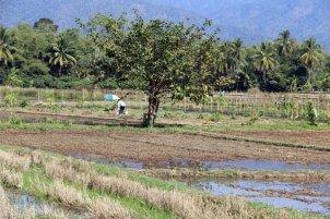 dans les alentours de Chiang Mai - l'autre ailleurs au Myanmar (Birmanie) et Thaïlande, une autre idée du voyage