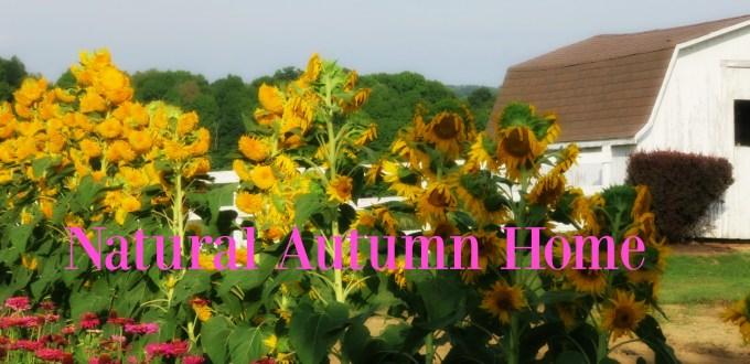 natural-autumn-home-2