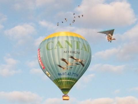 Voler avec les oiseaux en ULM ou Montgolfière