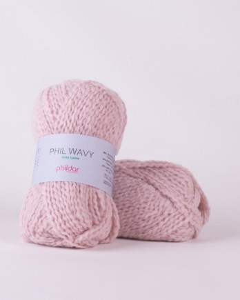 PHIL WAVY rose the