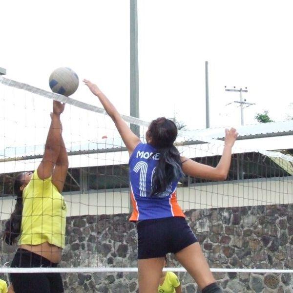 Liga Estudiantil de Voleibol