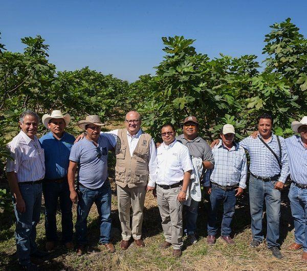 Programa de Certificación de Huertos Frutícolas por cinco millones de pesos