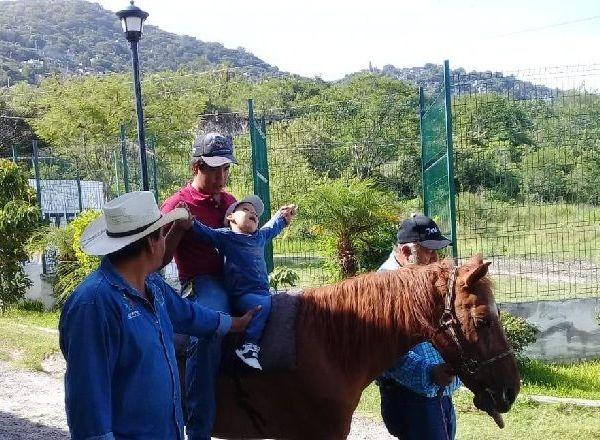 Lizeth Torres Manjarrez, directora general del DIF Jiutepec, informó que a través de la equinoterapia se estimula la afectividad, mejora la concentración y la atención, asimismo estimula la sensibilidad táctil, visual, auditiva y olfativa entre las personas con discapacidad