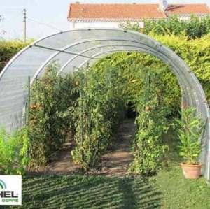 Serre à tomates 24m² – 3 m x 8 m – sans façade