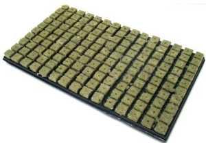 Grodan Tapis laine de roche, 150 cubes, 2,5x 2,5cm