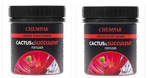 Chempak Engrais pour cactus & Succulent Nourriture Pot 200g Lot de 2