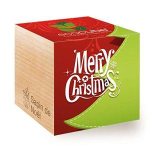 Feel Green Ecocube Joyeux Noël/1R, Épicéa (Sapin de Noël), Idée Cadeau (100% Ecologique), Grow-Your-Own/Kit Prêt-à-Pousser, Plantes Dans Des Cubes En Bois 7.5cm, Produit En Autriche