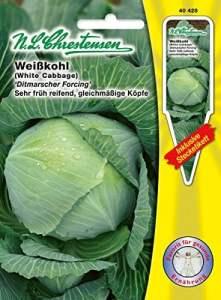 N.L. chrestensen 40428Semences de légumes, Jaune, 11,5x 0,5x 15,6cm