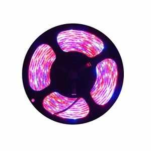 Tesfish Plante LED élèvent la lumière de Bande DC 12V IP65 Plein Spectre SMD 5050 Rouge Bleu 4: 1 Corde s'allume pour l'aquarium Serre