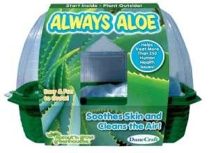 DuneCraft Always Aloe