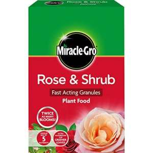 Scotts Miracle-Gro Rose et arbuste Action rapide de granules Engrais Carton, 3 kg Carton 3 Kg