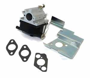 Ruche filtre Carb 640020b 640020A 640020640020C Snowblower Carburateur W/joints NEUF
