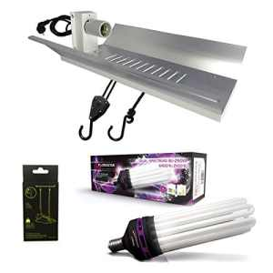 Kit lampe CFL 200W Dual spectrum – FLORASTAR