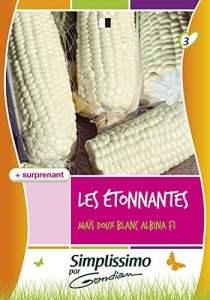 Gondian 513928 CP 3 Semences Mais Doux Albina F1 Blanc 1 x 8,1 x 16 cm