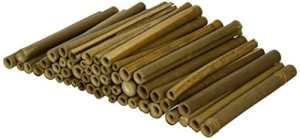 Wildlife World Lot de 50 tubes en bois pour abeilles solitaires