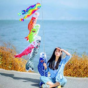 Ballylelly New Waterproof Japanese Carp Windsock Streamer Suspendus Drapeau De Poissons Décor Kite
