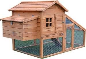 FeelGoodUK Poulailler 5 volailles, Rampe d'accès et tiroir à déjections – NCH10 L D'OR