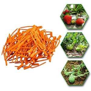 Lucktime Lot de 50 Clips de Jardinage pour Plantes grimpantes en Plastique pour tomates, légumes, Vigne