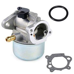 Parrshop Carburateur Carb pour Briggs & Stratton 497314497347497586498170498254498255498966698444790821799868799872