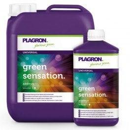 Plagron Green Sensation 5 litres – activateur de floraison et principes actifs et terpènes