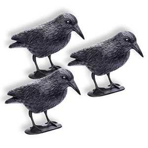 Schramm Lot DE 3Krähen Assis en Plastique Noir Pigeon Épouvantail en Forme de Corbeau Colombe Épouvantail Répulsif Contre Les Oiseaux Lot DE 3