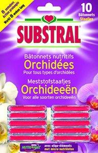 Substral Engrais Batonnets Orchidées x10