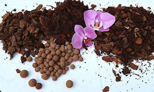 Terre à orchidée, Substrat Orchidée Phalaenopsis Terre, Mélange spécial de qualité supérieure 5l.