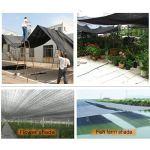 Hkewfnklozdl Filet D'ombrage Protection UV Jardin Piscine Soleil Maille De Sunblock Bord De Coupe pour La Couverture De Plante Serre D'ombrage80%(Couleur:Noir,Taille:2 * 2m)