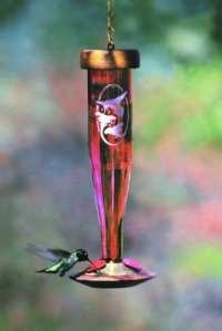 Schrodt PBBSHBLRE Ruby grav- pour colibris
